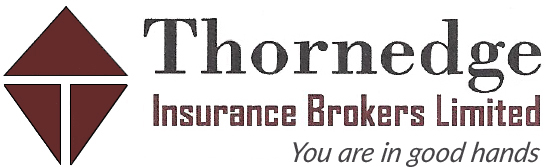 Thornedge Insurance Brokers logo